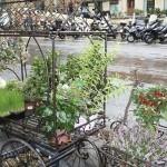 Улица Марчи в Болонье
