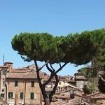 Сиена любимица Италии