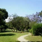 Ботанический сад в Кальяри (Сардиния)