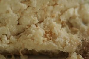Личинки в сыре Казу Марцу