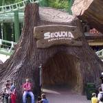 "Аттракцион ""Sequoia Adventure"""