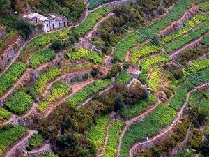 Корнилья - национальный парк Чинкве Терре в Италии