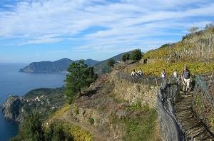 Тропа Любви в национальном парке Чинкве Терре (Италия)